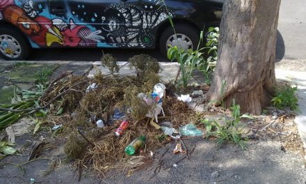 Shows em estádios: sabe quem recolhe o lixo depois?