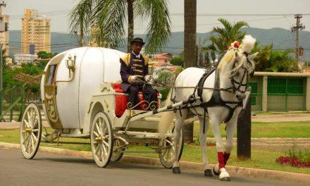 Onde alugar carruagens em São Paulo