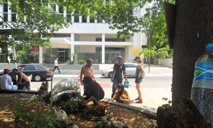 Hortas comunitárias ganham terreno na cidade grande